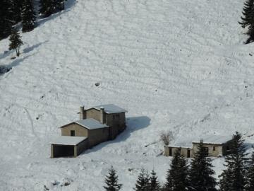 08 2012-12-15 neve Valzurio caprioli 002