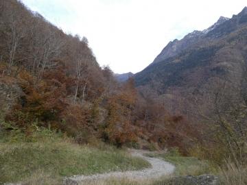 2020-11-01-valle-di-Fiumenero-52