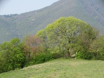 2021-04-24-Giro-dei-Buchi-32