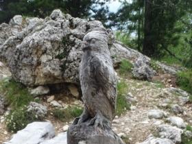 2016-07-02 giro del Sassolungo(33)