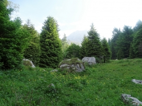 2017-06-14 Valle Scura e Ferrante (12)