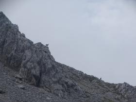 2017-06-14 Valle Scura e Ferrante (24)