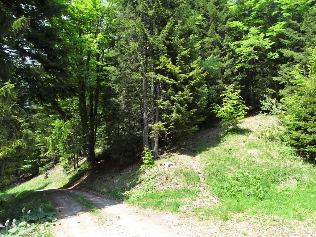 2019-06-08 m.te Grotta Rossa (10)