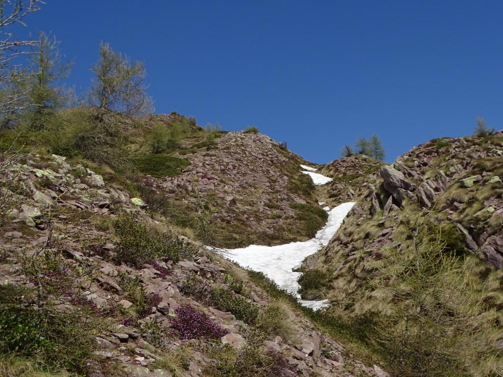 2019-06-08 m.te Grotta Rossa (44)