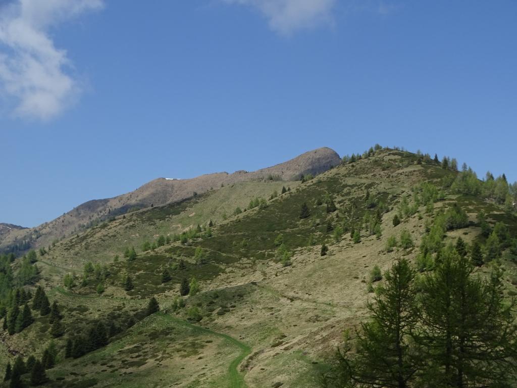 2019-06-08 m.te Grotta Rossa (71)