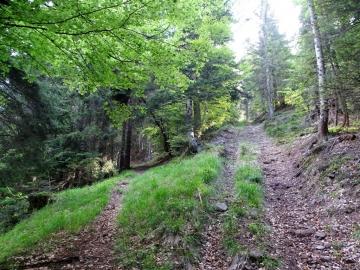 2019-06-08 m.te Grotta Rossa (11)