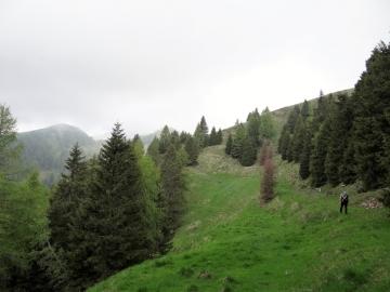2019-06-08 m.te Grotta Rossa (16)