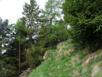 2019-06-08 m.te Grotta Rossa (17)