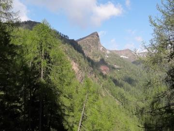 2019-06-08 m.te Grotta Rossa (23)