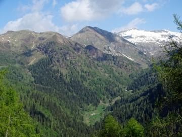 2019-06-08 m.te Grotta Rossa (24)