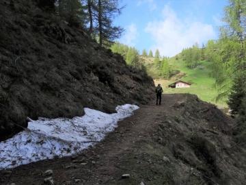 2019-06-08 m.te Grotta Rossa (26)