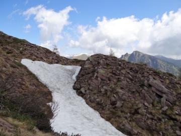 2019-06-08 m.te Grotta Rossa (48)