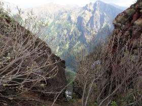 2019-06-08 m.te Grotta Rossa (65)