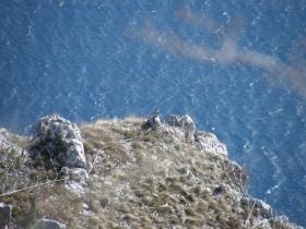 2009-02-14 monte danervo e cover 040