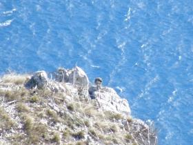 2009-02-14 monte danervo e cover 048