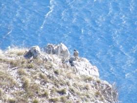 2009-02-14 monte danervo e cover 051