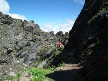 2011-07-20 sentiero Curò 030