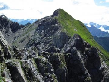 2011-07-20 sentiero Curò 036