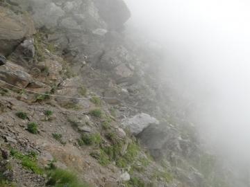 2011-08-03 Tagliaferri e sentiero Curò 079