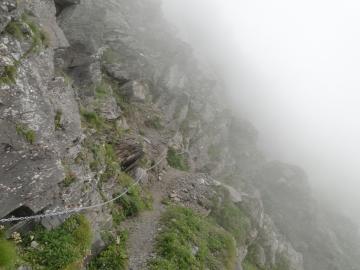 2011-08-03 Tagliaferri e sentiero Curò 080