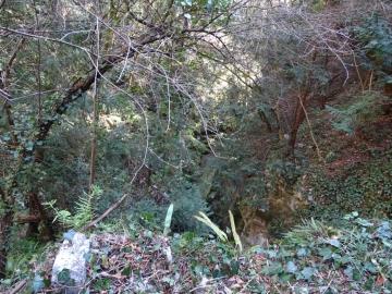 2016-02-24 monte Cas e puntesel (31)