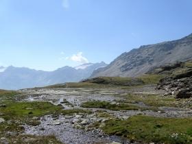 2017-08-04 valle di Peder (52)