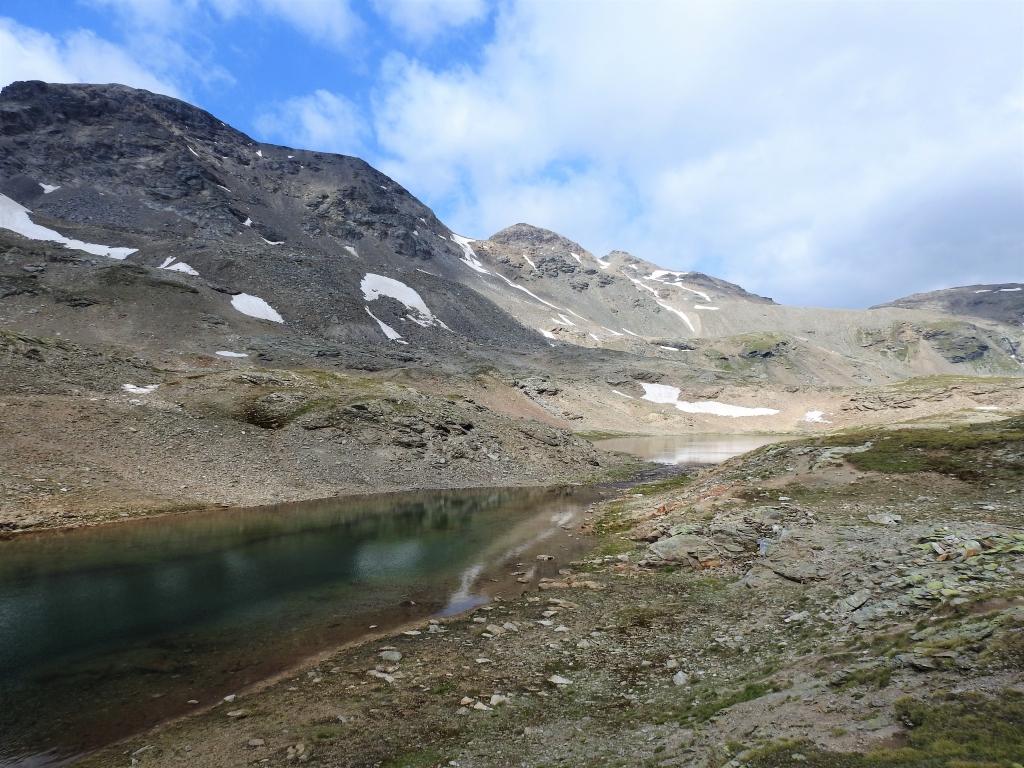 2018-07-10 laghi della Forcola e Primula integrifolia 057