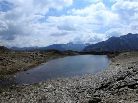 2018-07-10 laghi della Forcola e Primula integrifolia 062