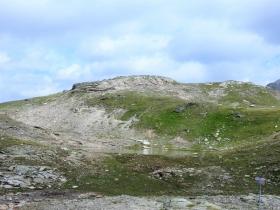 2018-07-10 laghi della Forcola e Primula integrifolia 058