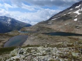 2018-07-10 laghi della Forcola e Primula integrifolia 067