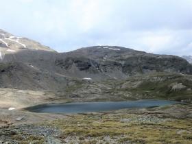 2018-07-10 laghi della Forcola e Primula integrifolia 071