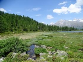 2017-06-24 laghi di S.Giuliano (32)