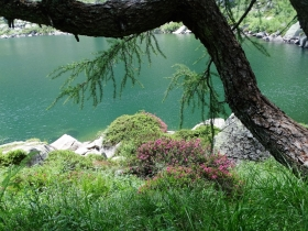 2017-06-24 laghi di S.Giuliano (50)