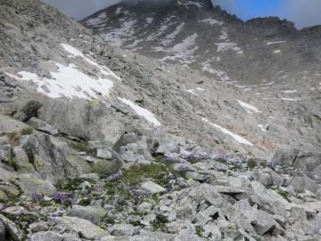 2020-07-19-lago-Scarpacò-48