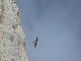 2012-02--26 Grotta dei Pagani Presolana 039