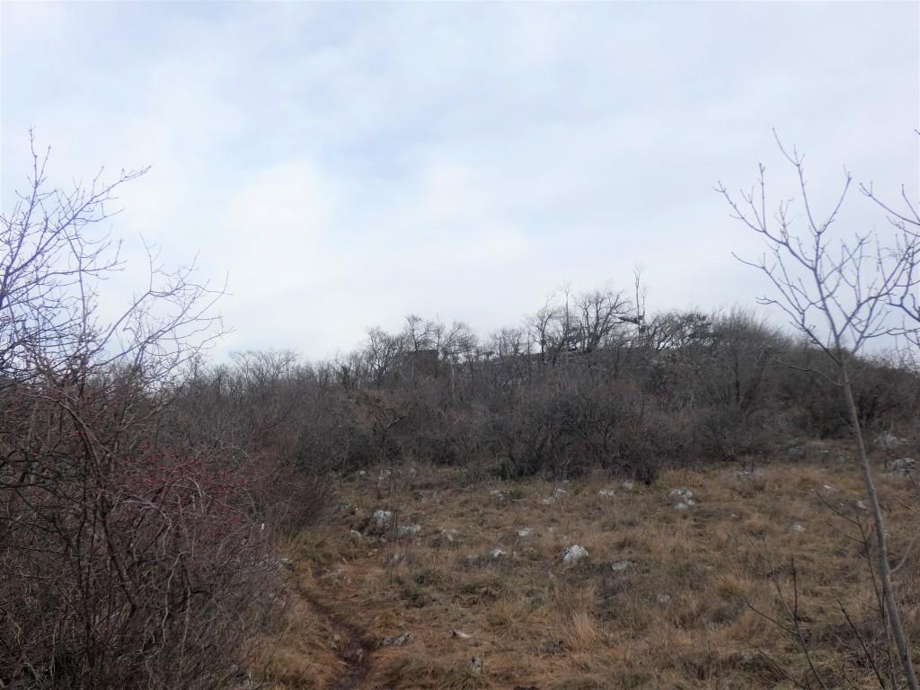 2021-01-24-monte-Maddalena-19