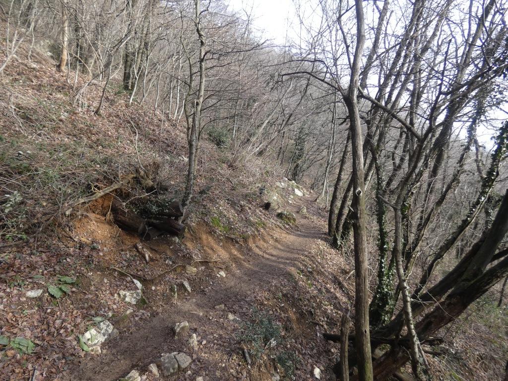 2021-01-24-monte-Maddalena-30