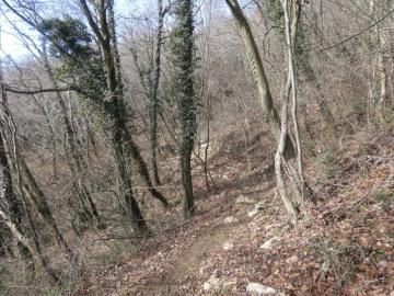 2021-01-24-monte-Maddalena-29