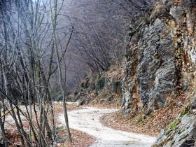 2017-12-31 Selva Piana (13)