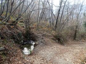 2017-12-31 Selva Piana (33)