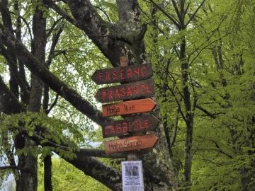 2019-05-26 malga Serolo e Rive 002