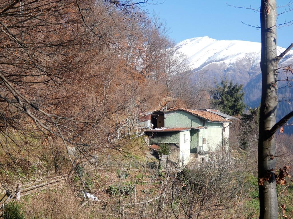 2019-12-04-malga-Vesgheno-66