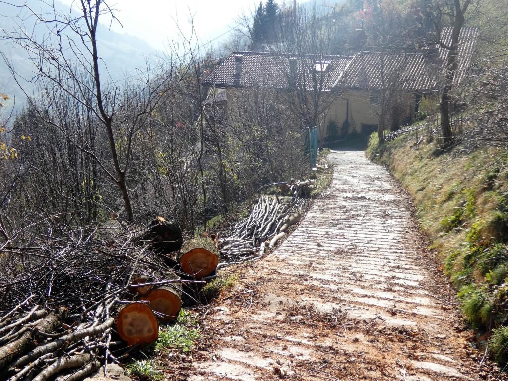 2019-12-04-malga-Vesgheno-67