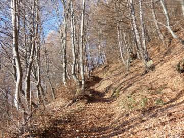 2019-12-04-malga-Vesgheno-28