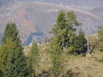 2021-10-13-cima-Carena-41