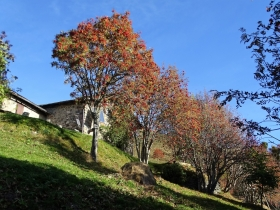 2018-10-24 monte Carena (12)