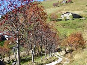 2018-10-24 monte Carena (37)
