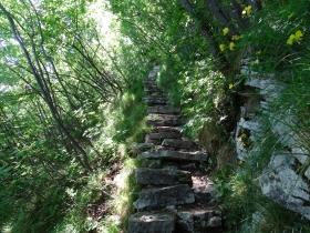06 2015-05-24 monte Cas Campione 024