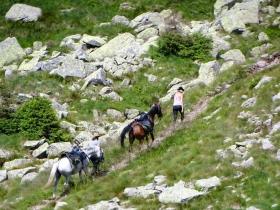 2018-07-28 monte Cauriol (74)