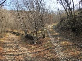 2018-03-14 monte Cordespino e forte S.Marco 057